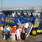 22-seal-tour